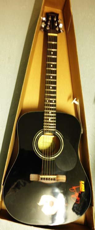 Silvertone Paul Stanley Acoustic