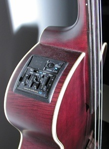 Takamine B-10 Electro Acoustic Upright Bass