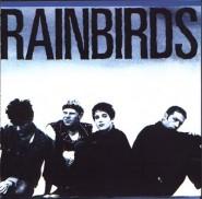 Rainbirds – Rainbirds USA